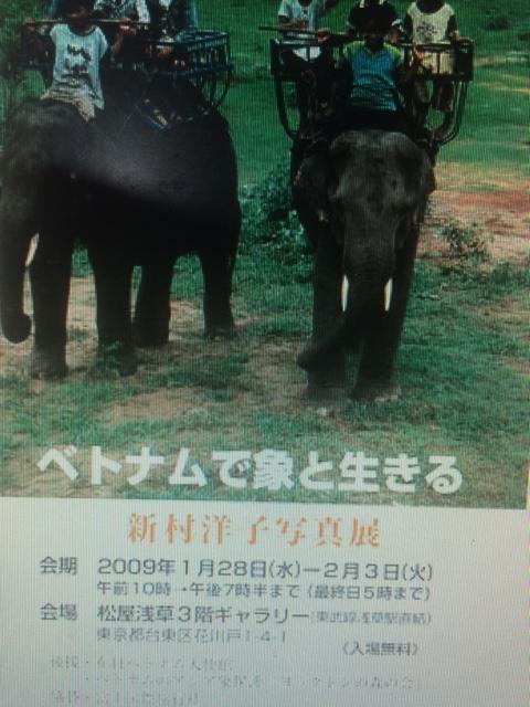 ベトナムで象と生きる 新村洋子 写真展